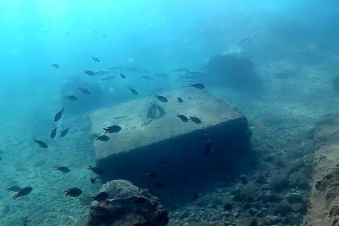 Fondos de El Espalmador en los que se ubicará la cámara submarina y la boya que se va a desarrollar.