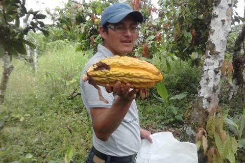 El autor de la tesis con un fruto del cacao.