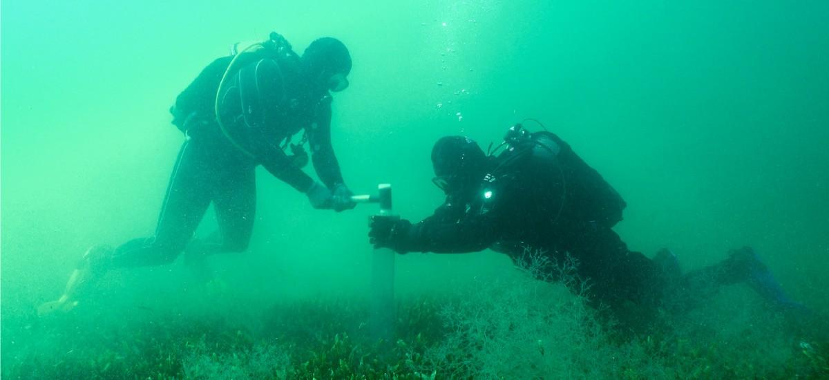 Analizan las consecuencias de la presión humana en el Mar Menor