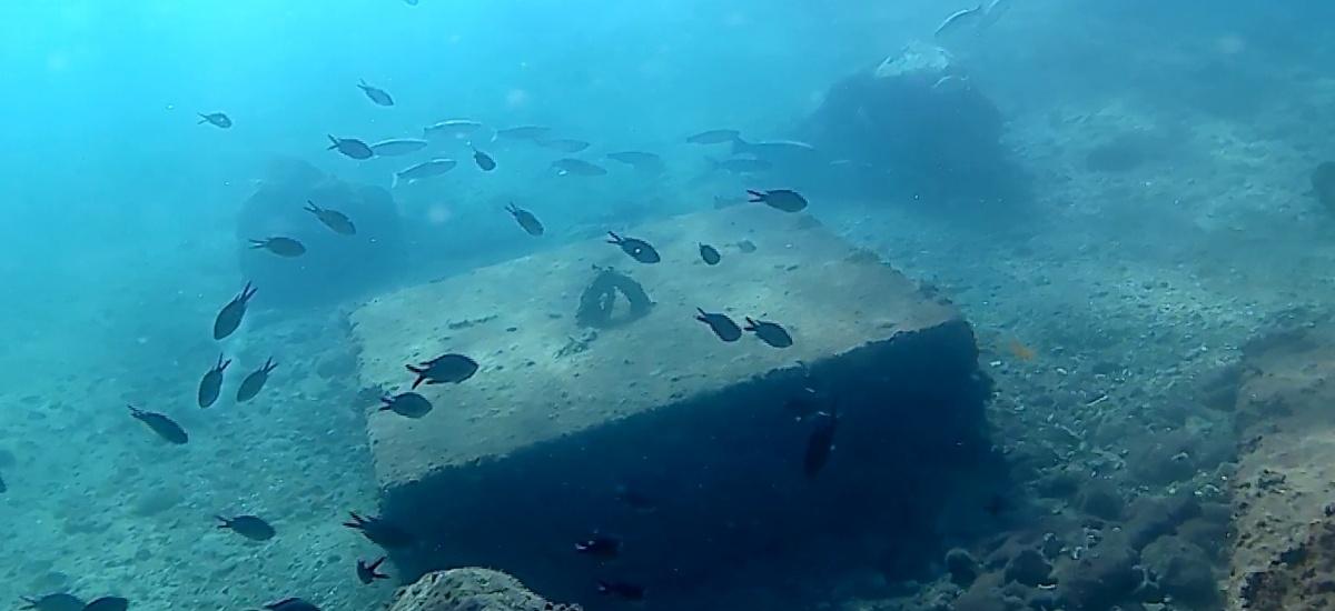 Una boya con cámara submarina emitirá en streaming las imágenes de los fondos del Puerto de Cartagena