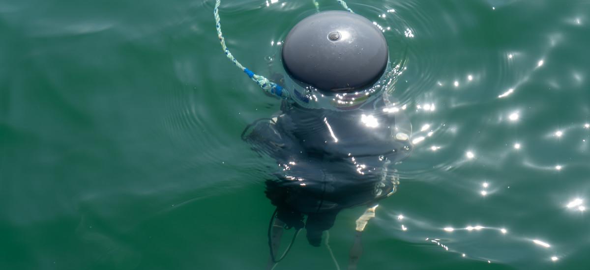 Una boya submarina comunica, a diario y a diferentes profundidades, el estado de las aguas del Mar Menor