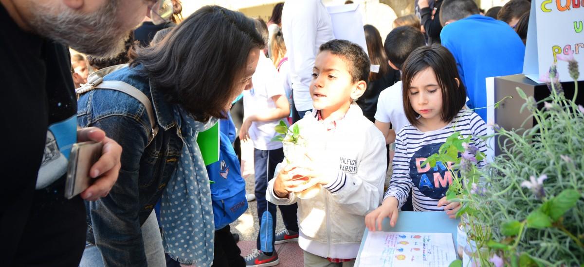 Foto: El colegio de La Concepción y el instituto de Espinardo ganan los premios Fundación Séneca del Campus de la Ingeniería